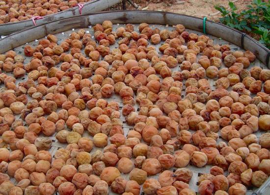特殊腌制的梅干(资料图片)