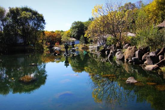 新浪旅游配图:镜泊峡谷美丽的观赏池 图片来源:赵天华