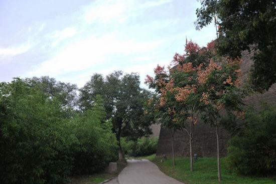 西安环城公园