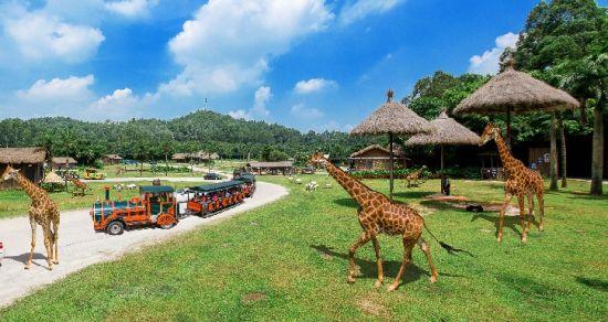 """中国 广东 正文    """"六一""""之际,带小朋友们到这个庞大的野生动物园,看"""