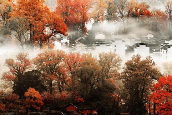 秋天剪纸步骤图解