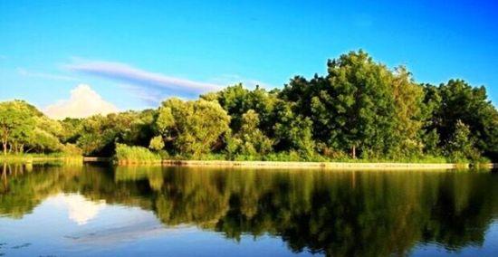 平静的湖面倒映着绝妙风景(图片来源于网络)