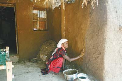 印度有些人干脆趁热将牛粪均匀地涂抹在自家房屋的墙壁上,据说这样可以祛邪镇魔。