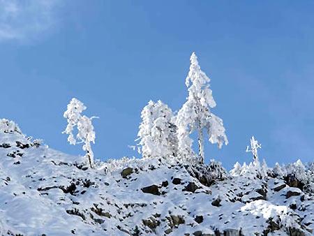 组图:飘渺冰川―贡嘎山的壮丽风光(7)