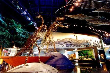 主题乐园推荐 常州中华恐龙园