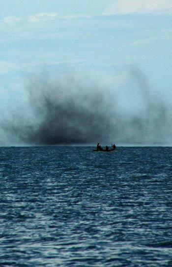 蠓虫在非洲马拉维湖面上聚集飞舞好像黑色的云雾。