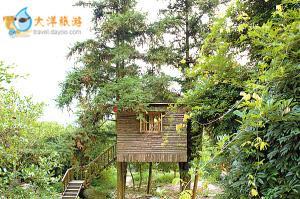 天门沟度假区九州驿站的童话树屋十分独特。树屋建在一片树林子里,有些屋子有大树从屋中穿过;部分则是靠木桩支撑、被藤蔓缠绕、藏于树丛中。木屋全部由山上的原木建成,不多一分装饰,不少一分功用。木屋里有完善的设施,在沁人的树木醇香中入眠。当夜色降临,住在木屋,品酒赏月,聆听鸟虫鸣奏,犹如回到儿时邻里鸡犬相闻的生活。天门沟度假区九州驿站的童话树屋十分独特。树屋建在一片树林子里,有些屋子有大树从屋中穿过;部分则是靠木桩支撑、被藤蔓缠绕、藏于树丛中。木屋全部由山上的原木建成,不多一分装饰,不少一分功用。木屋里有完善的设施,在沁人的树木醇香中入眠。当夜色降临,住在木屋,品酒赏月,聆听鸟虫鸣奏,犹如回到儿时邻里鸡犬相闻的生活。