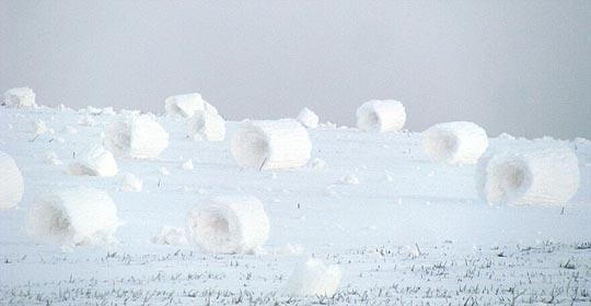 样子极像白色干草卷的雪卷
