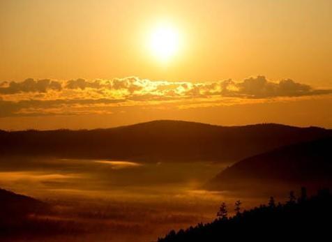 呼伦贝尔莫尔道嘎镇的林海日出景象