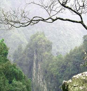 百崖大峡谷 正文    百崖大峡谷为广西区级风景名胜区,位于来宾市武宣