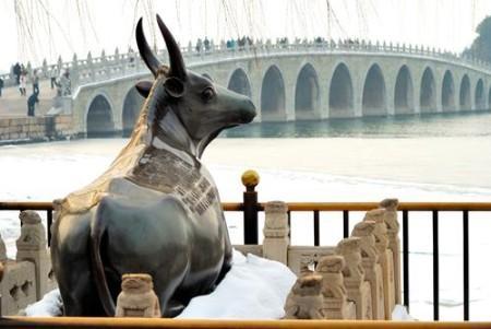 铜牛与十七孔桥