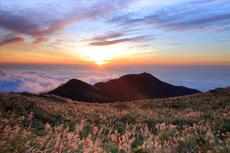 阳明山:一座火山的温柔故事