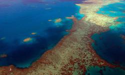 美轮美奂的凯恩斯大堡礁