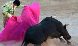 死亡与荣耀 血腥的西班牙斗牛
