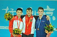 2008年跳水世界杯