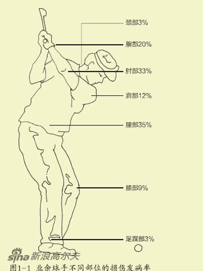 图1-1 业余球手不同部位的损伤发病率