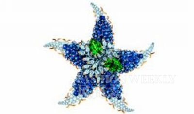 Tiffany&Co. Jean Schlumberger星形胸针