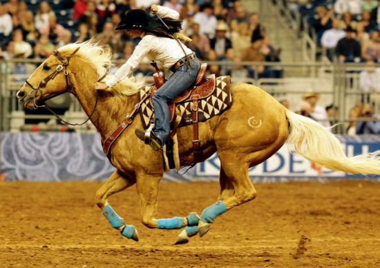 休斯顿牛仔节上挥鞭驰骋的女牛仔