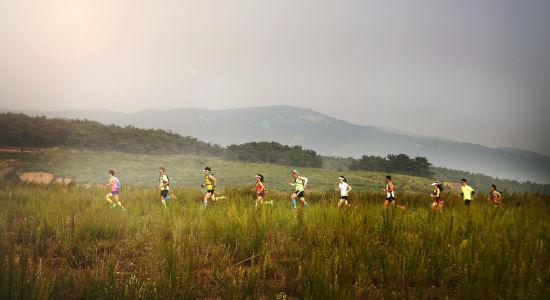 跑团活动精选。