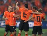 荷兰队庆祝扳平比分