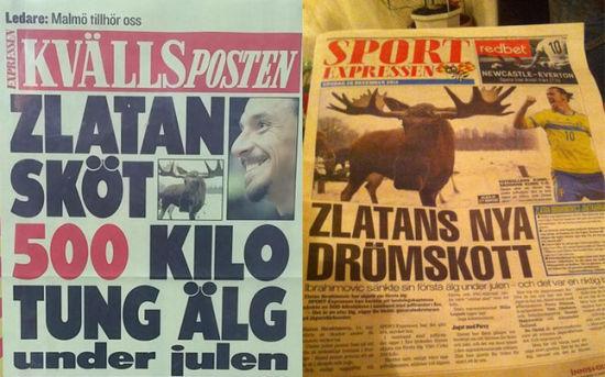 瑞典媒体大肆报道伊布一枪捕猎500公斤驯鹿的奇闻