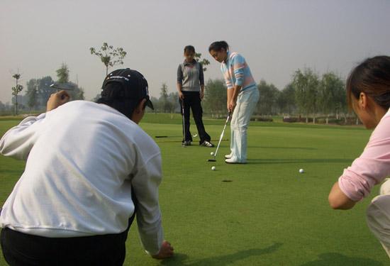 招生-北京金色河畔高尔夫学校2008年招生开始