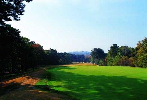 沈阳盛京国际高尔夫俱乐部5600多万债权将被卖