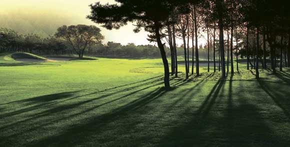 南山国际高尔夫球会会籍