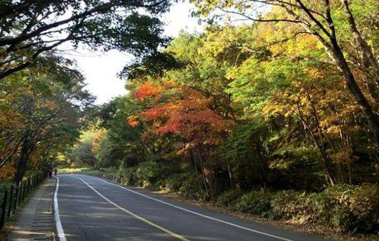 济州岛之旅