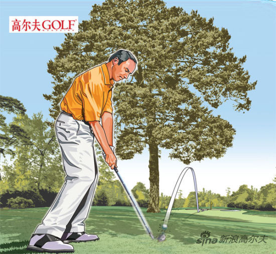 从树下击球通常比飞越或绕树的击球更安全