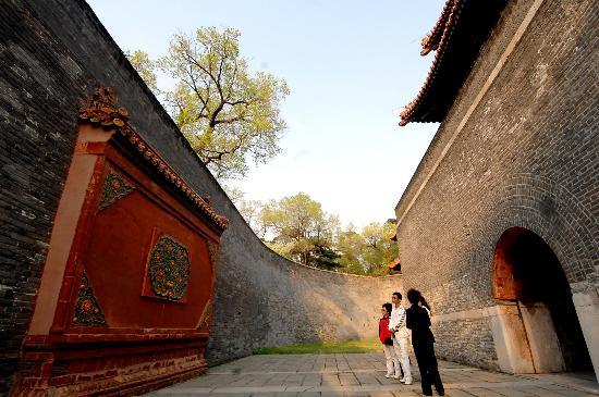 图文-北京奥运火炬传递城市之沈阳 游客观看文物