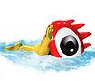 游泳-游泳