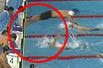亚运会-4x100混合泳中国率先触壁被判犯规 日本队夺冠