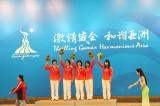 中国队五朵金花