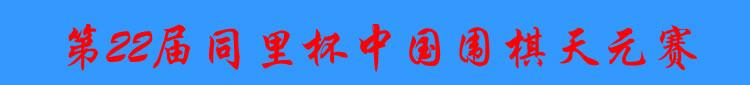 第22届同里杯中国天元赛